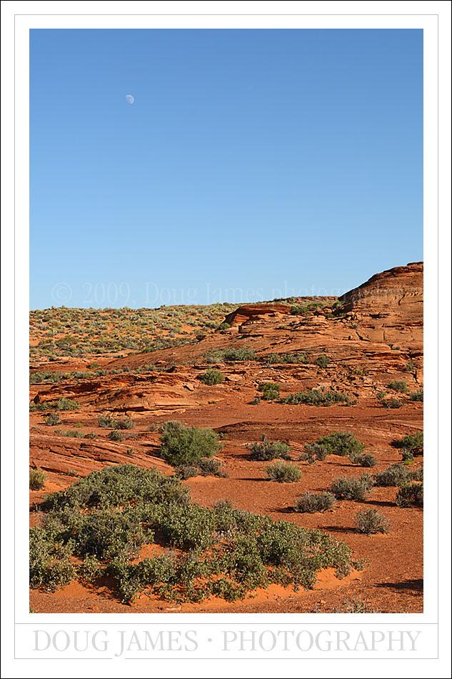 PhotoBlog_Desert_tall